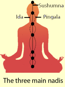 features-ida-pingala